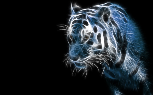 tiger-blue-amazing-hd-wallpapers