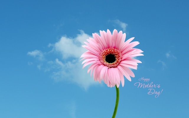 katenet-mothersdaywallpaper-2011a_2560