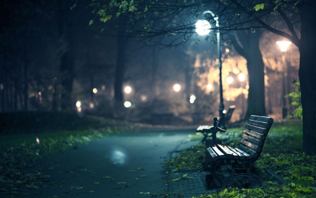 night-walk-park-hd-wallpaper-34071